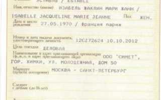 Нюансы электронной визы в Россию для иностранцев