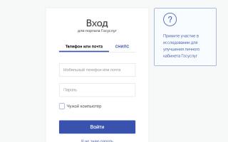 Как можно сделать паспорт онлайн