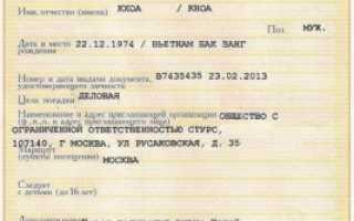 Чем характерна частная виза в Россию для иностранцев
