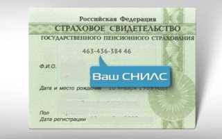 Как узнать номер СНИЛС онлайн по паспорту через портал Госуслуги