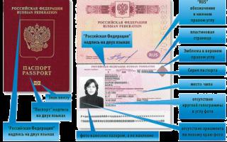 Алгоритм, как оформить визу в Словакию