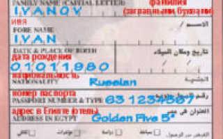 Сколько согласно правилам стоит виза в Египет