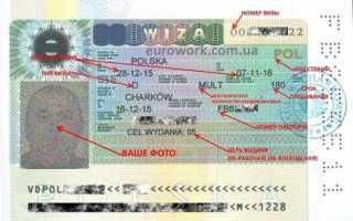 Назначенная цена за разовую визу в Польшу