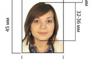 Особенности визы категории Д в Болгарию