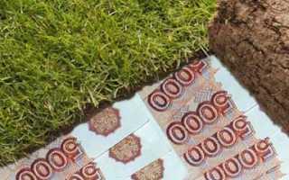 Понятие стоимости выкупа земельного участка от кадастровой стоимости