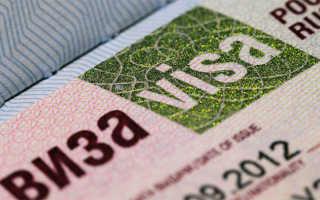 Необходимая виза для мужа иностранца в Россию