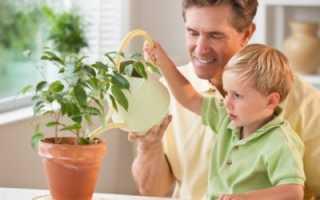 Как оформить регистрацию ребенка по месту жительства отца