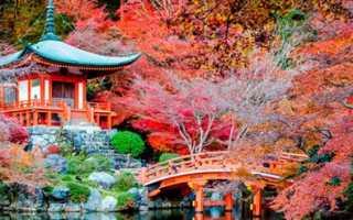 Как на практике получить визу в Японию