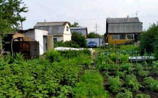 Особенности наследования земельного участка в СНТ