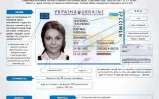 Как выглядит и какую информацию содержит биометрический паспорт