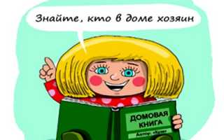 Где взять домовую книгу для замены российского паспорта