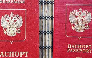 Какой вид загранпаспорта РФ делается быстрее