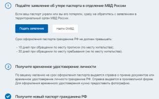 Что делать, если был потерян российский паспорт