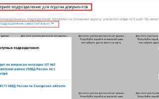 Заявка на загранпаспорт в режиме онлайн