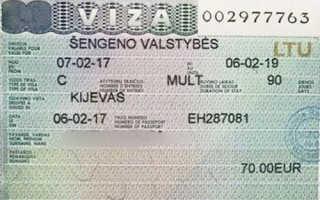 Как именно можно получить визу в Литву