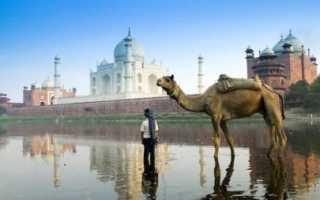 Транзитная виза в Индию для россиян