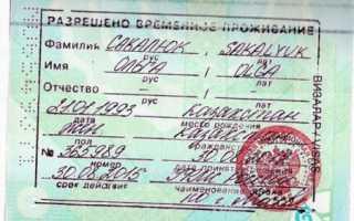 Что из себя представляет многократная виза в Россию