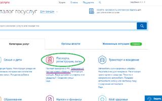 Какой выбрать тип оформления загранпаспорта России при смене фамилии