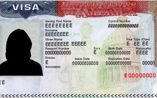 Сколько дней делается неиммиграционная туристическая виза в США