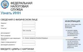 Как максимально быстро узнать ИНН без паспорта через Интернет