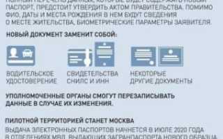 Общая суть электронного паспорта