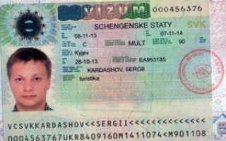 На сколько по времени дают визу в Германию