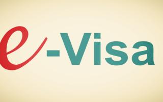 Пошаговая инструкция по заполнению электронной визы в Индию