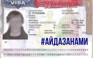 Как внешне выглядит виза в США