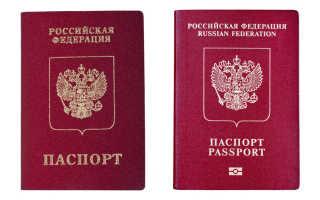 Как получить второй загранпаспорт через Госуслуги при наличии первого