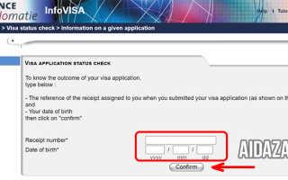 Как можно проверить онлайн готовность визы во Францию