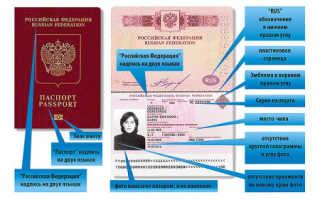 Как можно получить биометрический паспорт