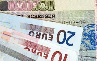 Чем характерна рабочая виза в Норвегию для россиян