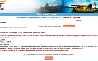 Нюансы электронной визы в Индию в 2020 году