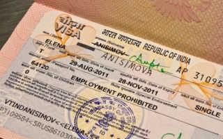Как получить однократную визу в Индию