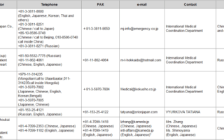Главные требования для визы в Японию