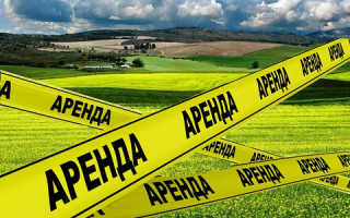 Порядок сдачи или взятия в аренду части земельного участка