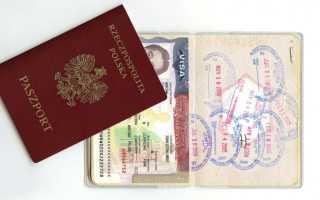 Установленная цена на туристическую визу в США