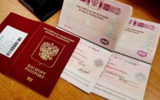 Сколько по времени делается виза в Чехию