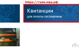 Необходимые реквизиты для оплаты госпошлины за паспорт РФ