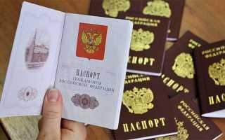 Как выглядит проверка паспорта на действительность